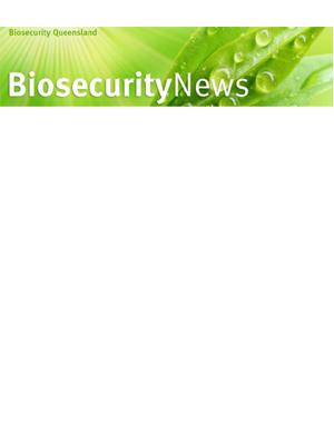 biosecurity qld